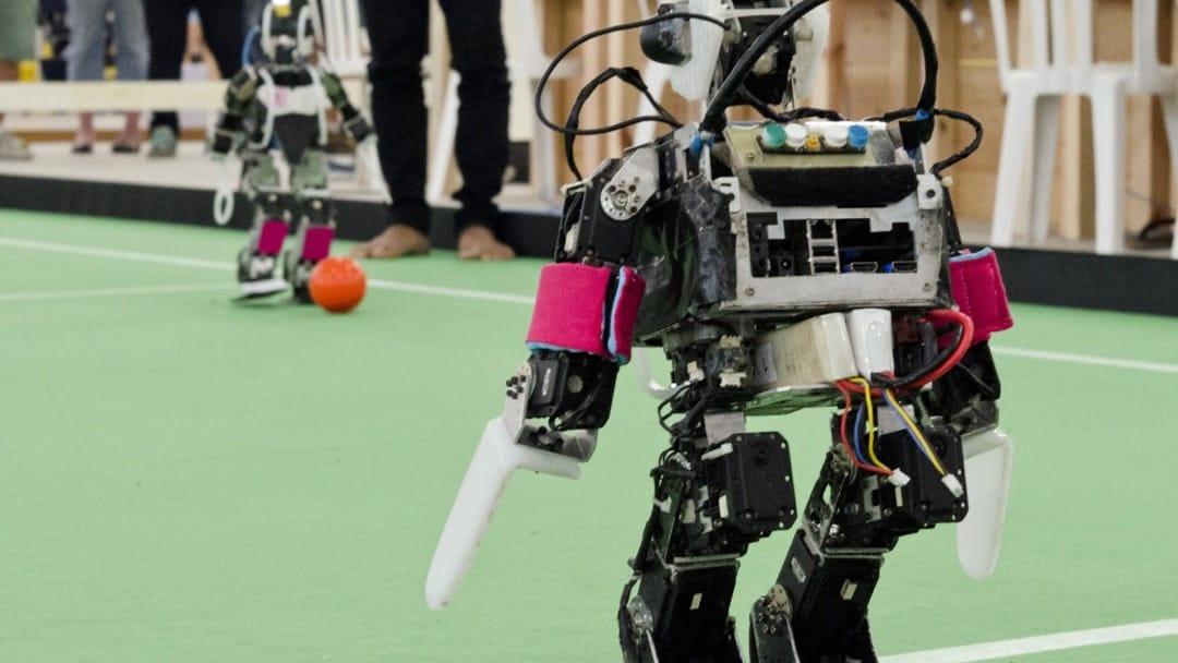 humanoid robots types of robotics engineering jobs